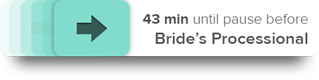 The app suggest steps for you take throughout your wedding day
